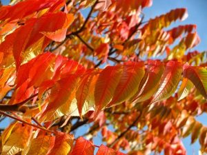 ¡Protégete del sol también en otoño!